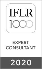 expert consultant 20